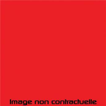 Peinture Rouge de Rio pour 2CV 1972  -> 1975 - AC 424