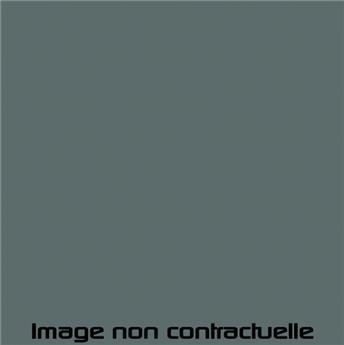 Peinture Bleue Névé pour 2CV 1969 - AC 609