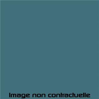 Peinture Bleu Lagune pour 2CV 1974  -> 1983 - AC 639