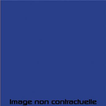 Peinture Bleue pour Méhari Azur - AC 356