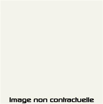 Peinture Blanc Stellaire pour 2CV 1969 - AC 097