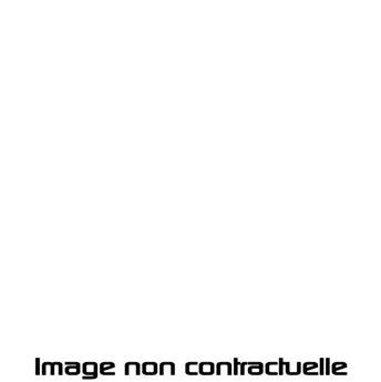 Peinture Blanc Cygne pour 2CV 1970 - AC 093