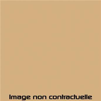 Peinture Beige Gazelle pour 2CV 1977  -> 1978 - AC 079
