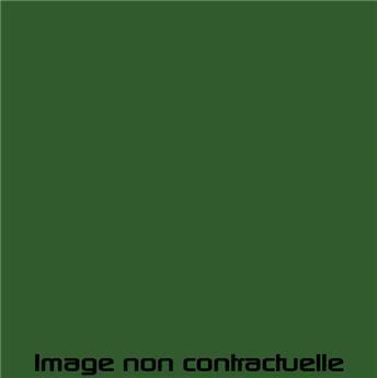 Peinture Vert Agave pour 2CV 1965  -> 1966 - AC 514