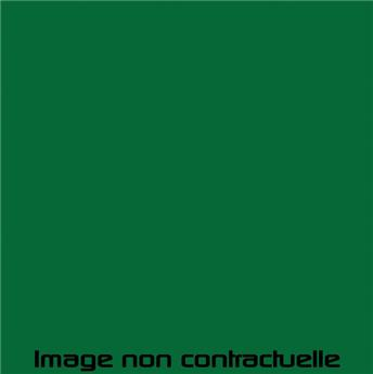 Peinture Vert Tuilerie pour 2CV 1975 - AC 531
