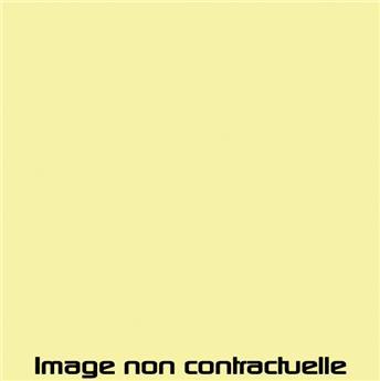 Peinture Jaune Panama pour 2CV 1961 -> 1962 - AC 307