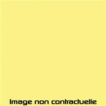 Peinture Jaune Rialto pour 2CV 1984  -> 1990 - EAA