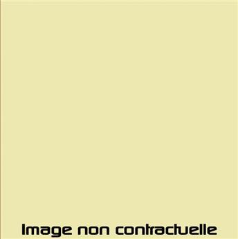 Peinture Jaune Pastis pour 2CV AZU et AK 1964  -> 1968 - AC 310