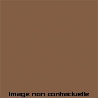Peinture Paille Brûlée pour 2CV 1970 - AC 317