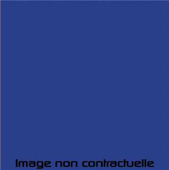 Bombe de peinture Bleu Azur pour Méhari - AC 356 - 298 ml