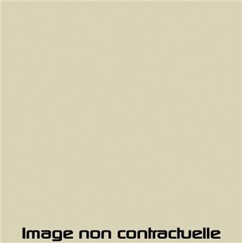 Bombe de peinture Beige Erable pour 2CV 1970  -> 1971 - AC 090 - 298 ml