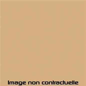 Bombe de peinture Beige Gazelle pour 2CV 1977  -> 1978 - AC 079 - 298 ml