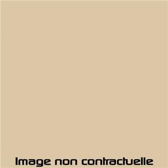 Bombe de peinture Beige Névada pour 2CV 1979  -> 1981 - AC 074 - 298 ml